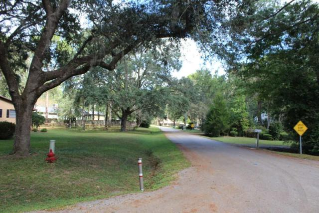 TBD Holly, Monticello, FL 32344 (MLS #251601) :: Best Move Home Sales