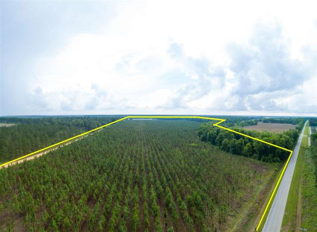 000 Prevette Road, Whigham, FL 39897 (MLS #293884) :: Berkshire Hathaway HomeServices Beach Properties of Florida