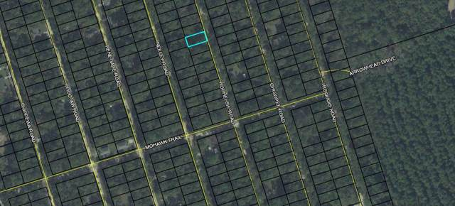 Rochelsie, Crawfordville, FL 32327 (MLS #314374) :: Best Move Home Sales