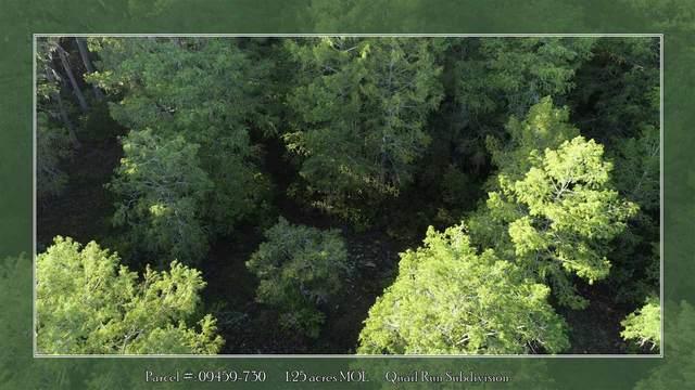 0 NE Oak Pond Circle, Perry, FL 32359 (MLS #321985) :: Danielle Andrews Real Estate