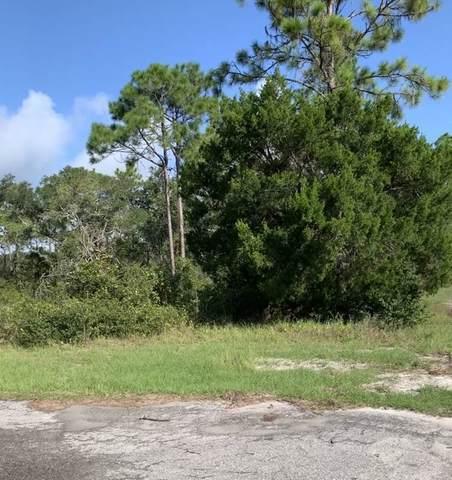 Lot 42 Hinton Street, Carrabelle, FL 32323 (MLS #323998) :: Team Goldband