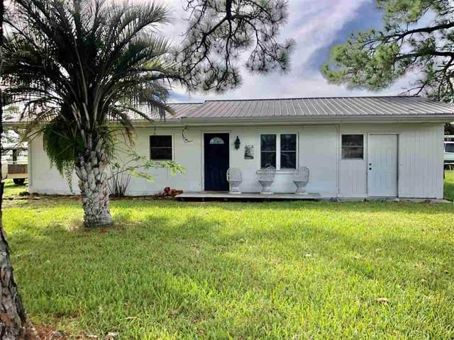 56 Blue Heron Way, Panacea, FL 32346 (MLS #326089) :: Team Goldband