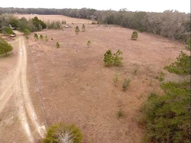 5244 NE Hickory Grove Road, Pinetta (Madison County), FL 32350 (MLS #328474) :: Team Goldband