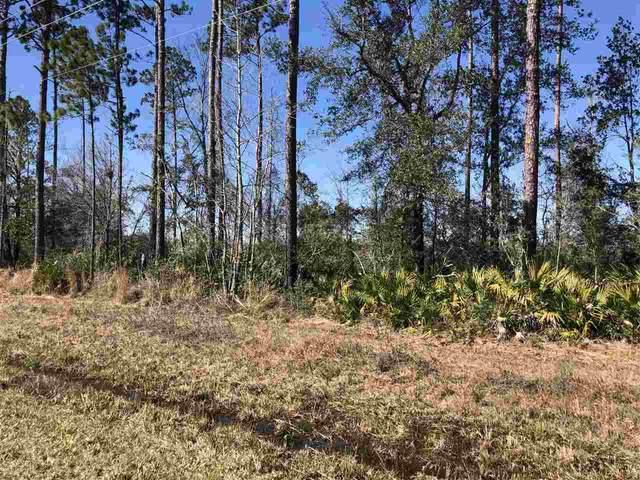 XXXX Coastal - Lot 3 Highway, Crawfordville, FL 32327 (MLS #328697) :: Team Goldband