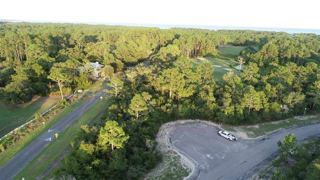 118 Royal Tern Way, Carrabelle, FL 32322 (MLS #329338) :: Team Goldband