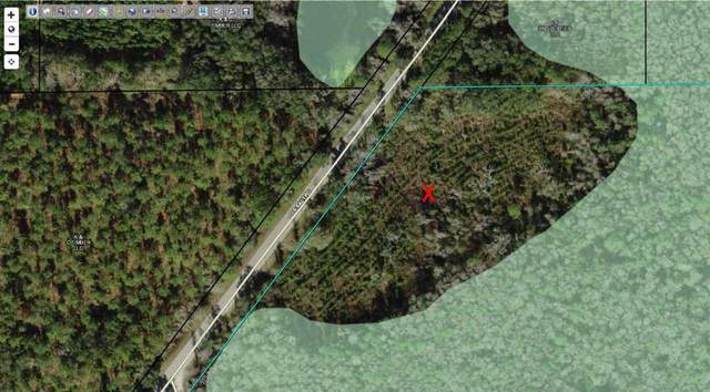 S Salt Road, Monticello, FL 32344 (MLS #330465) :: Danielle Andrews Real Estate