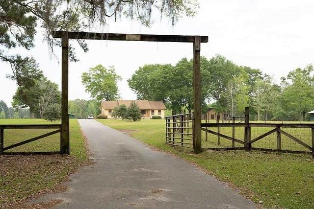 14024 Godbold Road, Tallahassee, FL 32309 (MLS #331667) :: Danielle Andrews Real Estate