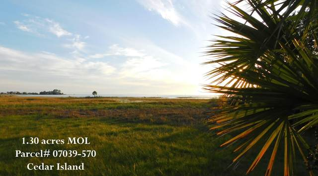 000 Cedar island Road, Perry, FL 32348 (MLS #338652) :: Team Goldband