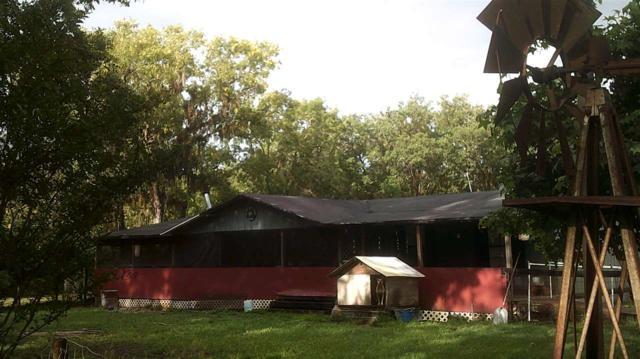 14535 Robert Ezell, Perry, FL 32348 (MLS #293977) :: Berkshire Hathaway HomeServices Beach Properties of Florida