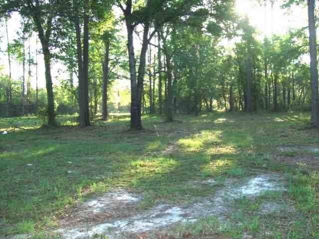 xx Crawfordville Hwy, Crawfordville, FL 32327 (MLS #255977) :: Best Move Home Sales