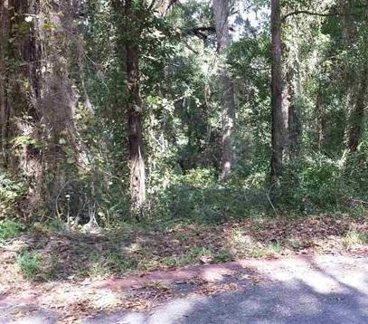 LOT 3 Grandview Ct, Tallahassee, FL 32303 (MLS #263188) :: Berkshire Hathaway HomeServices Beach Properties of Florida