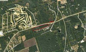 Lot 82 Coastal, Crawfordville, FL 32327 (MLS #285811) :: Purple Door Team
