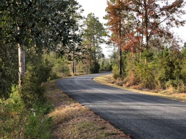 0 Natural Bridge Road, Woodville, FL 32362 (MLS #288129) :: Best Move Home Sales