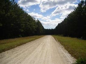 Lot 3G Carribean, Perry, FL 32348 (MLS #290157) :: Best Move Home Sales