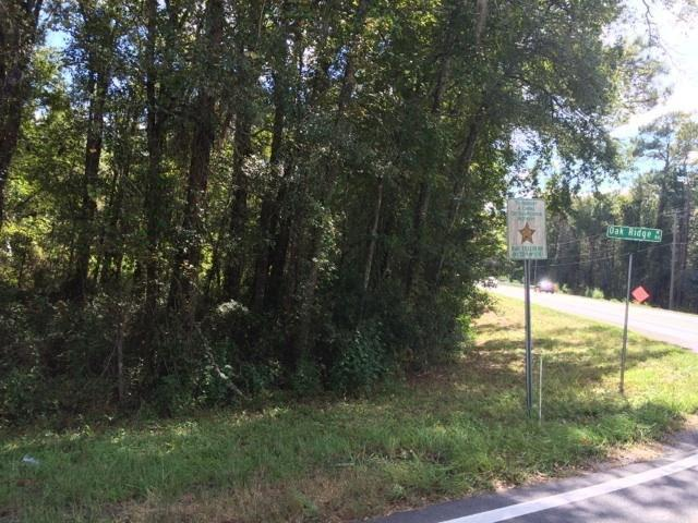 0 Crawfordville, Tallahassee, FL 32305 (MLS #290300) :: Best Move Home Sales