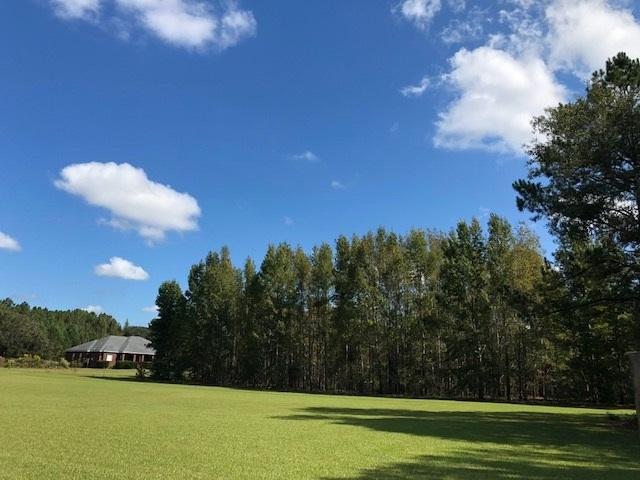 XXX Robinson Farms Road, Tallahassee, FL 32317 (MLS #299397) :: Best Move Home Sales