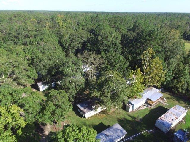 44271 SW Forest Road 115, Bristol, FL 32321 (MLS #299815) :: Best Move Home Sales