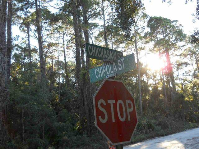 xx Chipola, Panacea, FL 32346 (MLS #303624) :: Best Move Home Sales