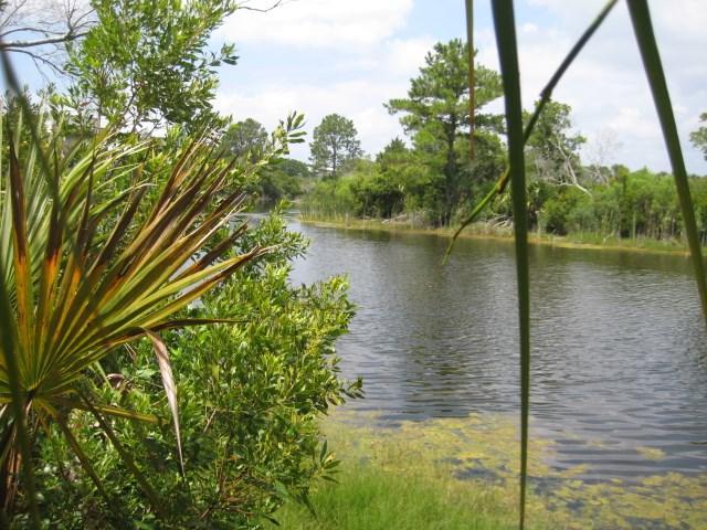 xxx Seabreeze Drive #2, Shell Point, FL 32327 (MLS #307052) :: Danielle Andrews Real Estate