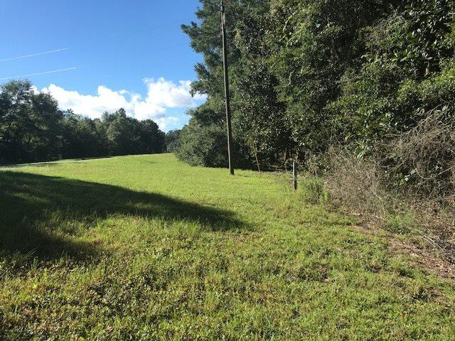 XXX Lakeview Point, Quincy, FL 32351 (MLS #307556) :: Best Move Home Sales