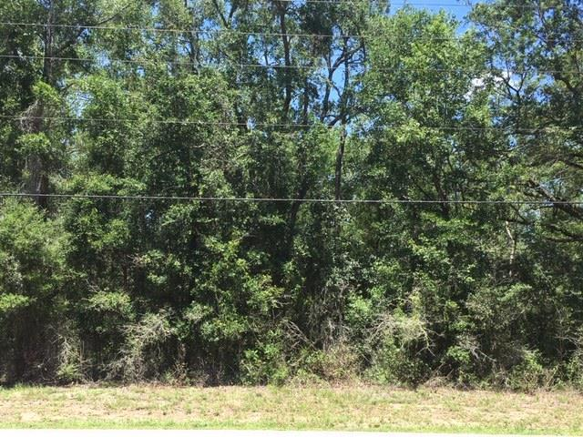 xx Sopchoppy Hwy., Sopchoppy, FL 32358 (MLS #307630) :: Best Move Home Sales