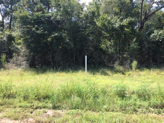 xx Coastal, Crawfordville, FL 32327 (MLS #309927) :: Best Move Home Sales