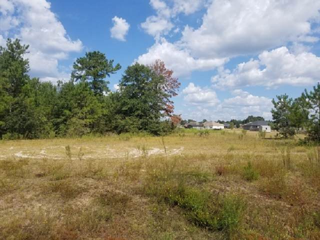 180 James Hinson, Midway, FL 32343 (MLS #311043) :: Best Move Home Sales