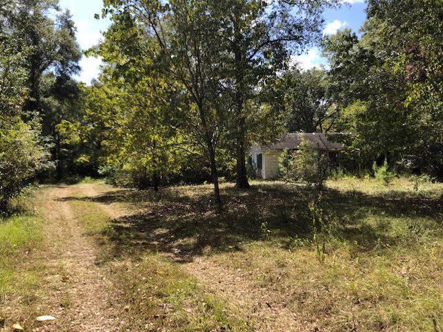 193 Duckpond, Greenville, FL 32331 (MLS #311189) :: Best Move Home Sales