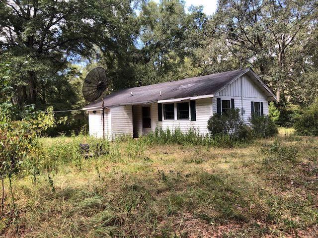 193 Duckpond, Greenville, FL 32331 (MLS #311194) :: Best Move Home Sales