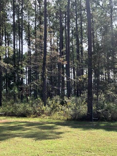 Coastal, Crawfordville, FL 32327 (MLS #312194) :: Best Move Home Sales