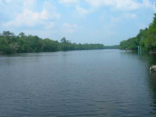 xxx Pamela, Sopchoppy, FL 32358 (MLS #314820) :: Best Move Home Sales