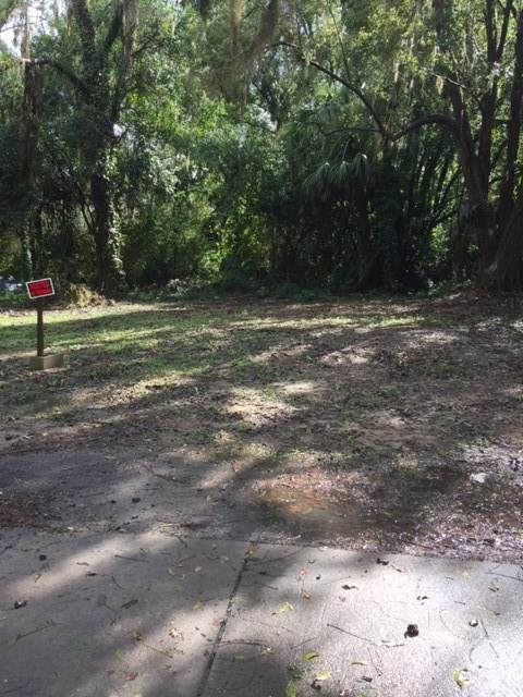 Ash Street, Monticello, FL 32344 (MLS #315367) :: Team Goldband