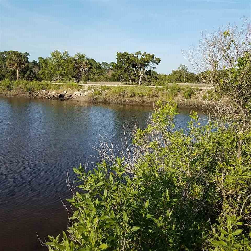 54 Cedar Island Way - Photo 1