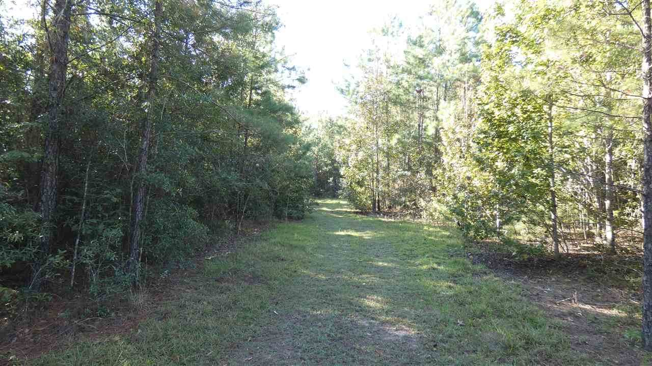 TBD Coopers Pond Road - Photo 1