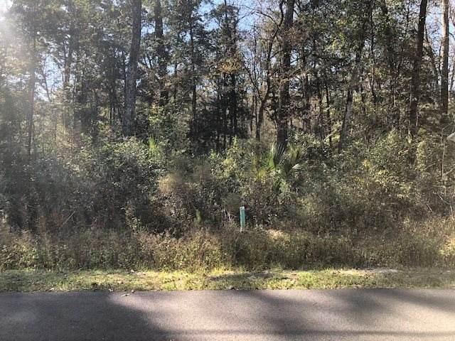 XX Blackfoot Road, Crawfordville, FL 32327 (MLS #325783) :: Team Goldband