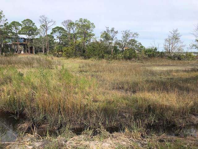 Chickasaw Street, Panacea, FL 32346 (MLS #326431) :: Team Goldband