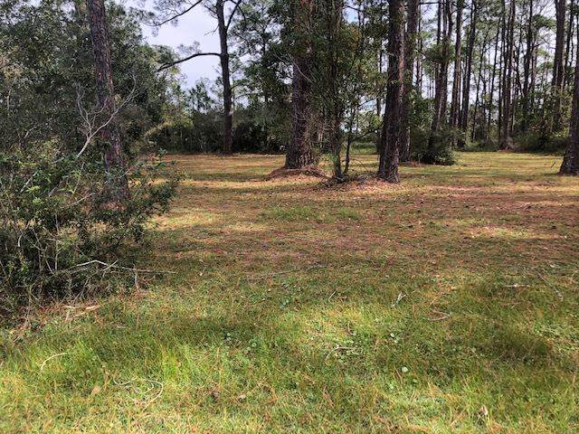Suwannee Avenue, Panacea, FL 32346 (MLS #326432) :: Team Goldband