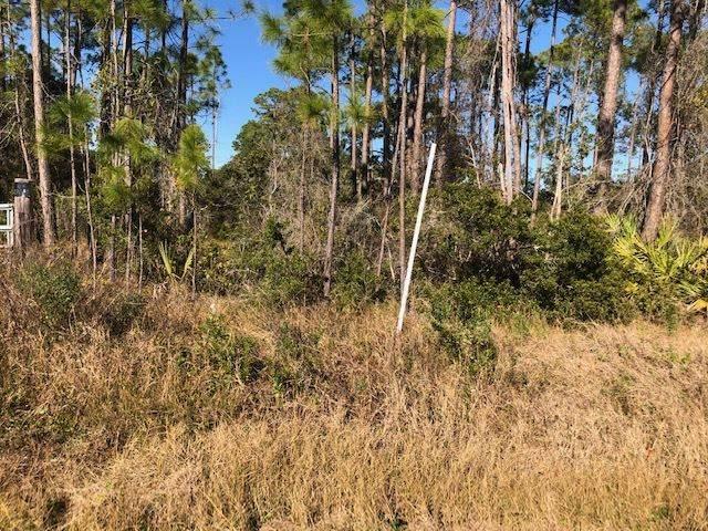 2460 Surf Road, Ochlockonee Bay, FL 32346 (MLS #326798) :: Danielle Andrews Real Estate