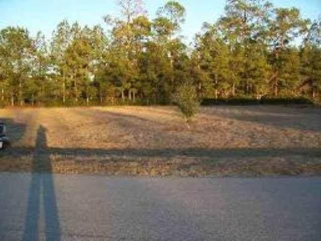 Lot 10 Twin Oaks Drive #0, Bristol, FL 32321 (MLS #327620) :: Danielle Andrews Real Estate