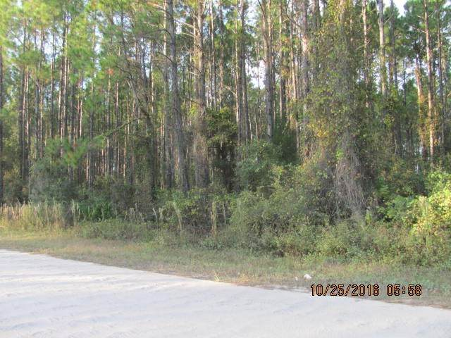 XX Mill Road #0, Carrabelle, FL 32322 (MLS #328508) :: Danielle Andrews Real Estate
