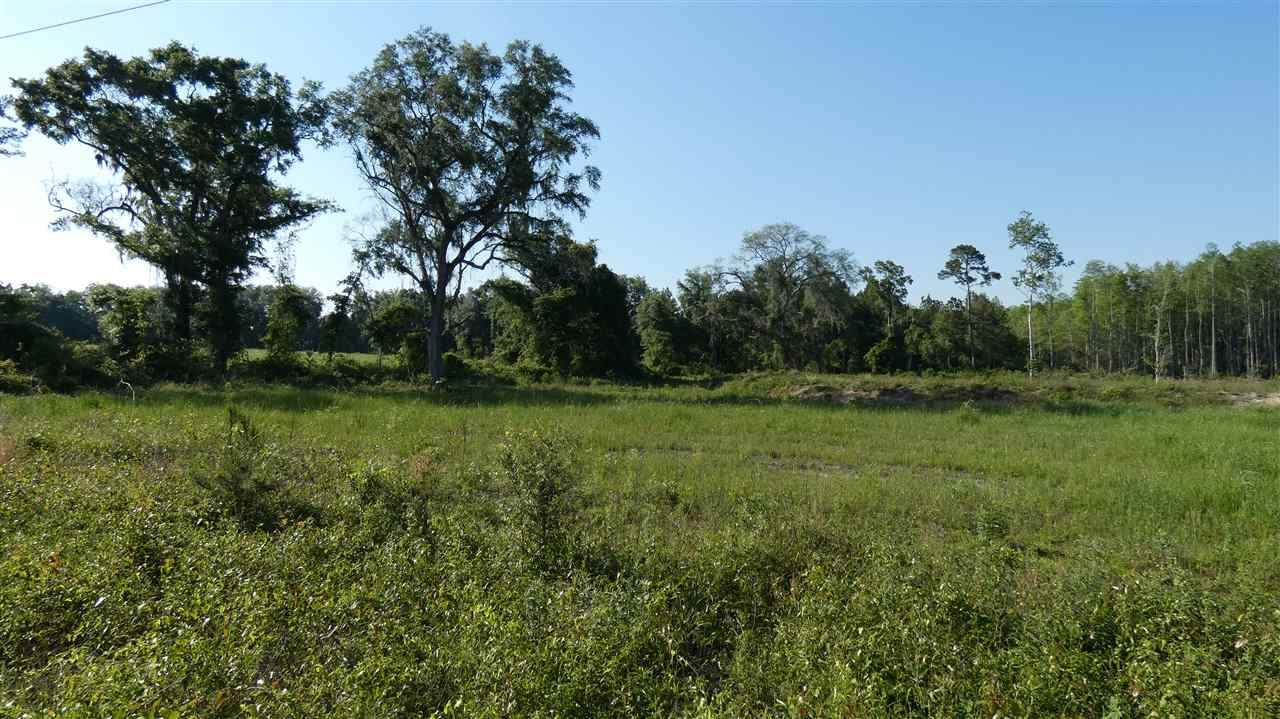 TBD Frank Lacy Road - Photo 1