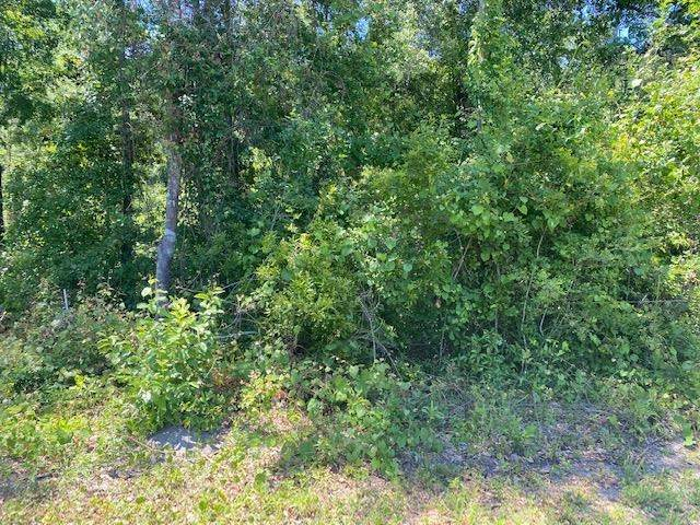 XX Railroad & Wakulla Avenue, Sopchoppy, FL 32358 (MLS #332075) :: Team Goldband