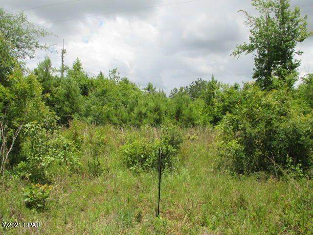 0000 NW Chipola Heights Road, Altha, FL 32421 (MLS #333380) :: Danielle Andrews Real Estate