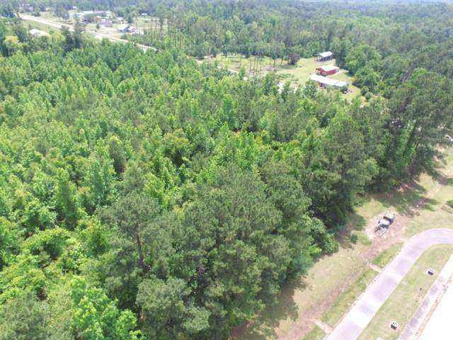 XXX NW County Road 12, Bristol, FL 32321 (MLS #333447) :: The Elite Group | Xcellence Realty Inc
