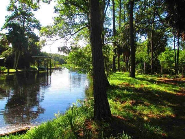 4111 Spring Creek Highway, Crawfordville, FL 32327 (MLS #333820) :: Danielle Andrews Real Estate