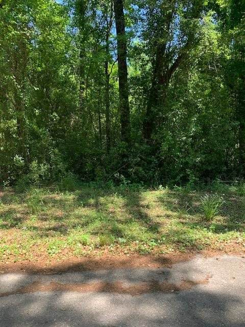 0 Marie Circle, Crawfordville, FL 32327 (MLS #333873) :: Danielle Andrews Real Estate