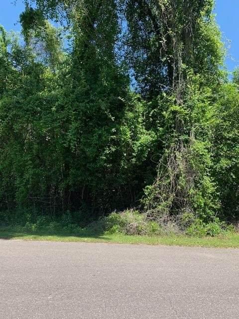 0 Marie Circle -, Crawfordville, FL 32327 (MLS #333875) :: Danielle Andrews Real Estate