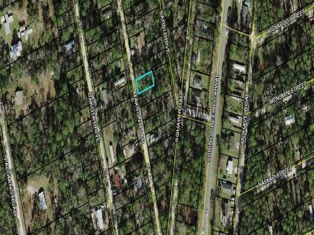 Lot 10 Maxson Road, Crawfordville, FL 32327 (MLS #333912) :: Danielle Andrews Real Estate