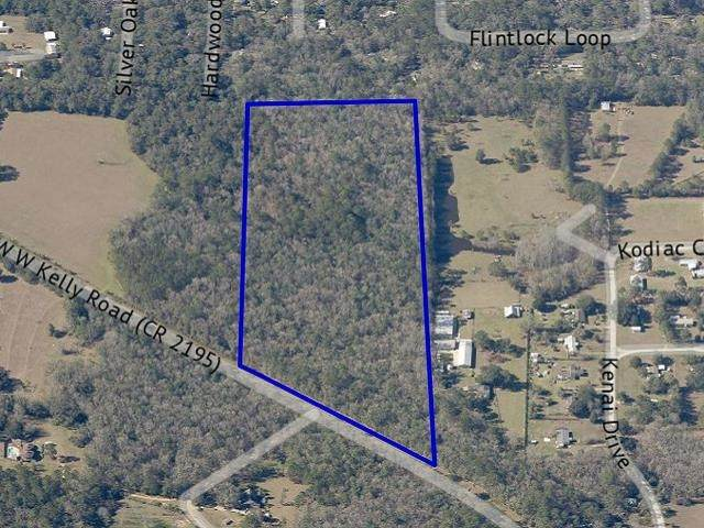 0 W W Kelley Road, Tallahassee, FL 32311 (MLS #337315) :: Danielle Andrews Real Estate