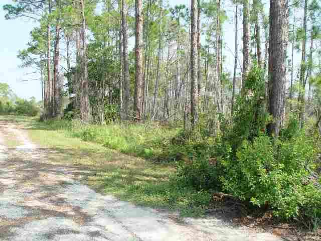 34 Lakeview Drive #1, Bald Point, FL 32346 (MLS #337642) :: Danielle Andrews Real Estate